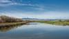 610_2402 (rskim119) Tags: nikon nature landscape san joaquin river national wildlife refuge