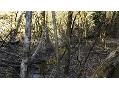 DSCF0916 (kevinredden1) Tags: hikes streambed hidden