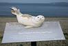 do not disturb (n.a.) Tags: sign sleeping seal pups seattle beach wa us rest west beaches sitters do disturb