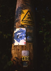 Lomography La Sardina - Agfa Vista Plus 200 (2) (meniscuslens) Tags: sardina lomography agfa vista pole sign signs wood film cheddington buckinghamshire shadow