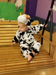 Chilling on the swing (quinn.anya) Tags: paul toddler cow costume farm swing relaxing