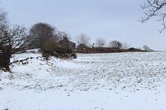 Winter Scene (jdathebowler Thanks for 1.7 Million + views.) Tags: winterscene snowscenes snow farmbuildings farmland countryside countryscene