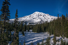 Without Words (writing with light 2422 (Not Pro)) Tags: mountrainiernationalpark mountrainier volcano stratovolcano snow sonya77 sigma1020mmlens landscape richborder washingtonstate trees firtrees pine
