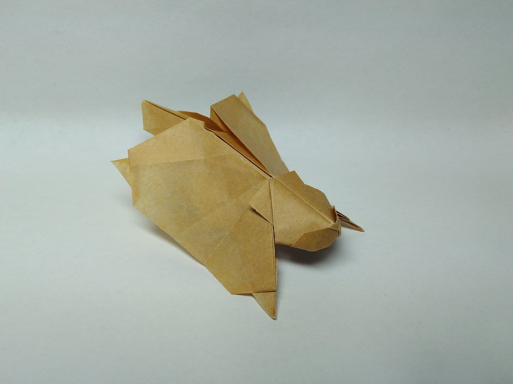 Flying Squirrel By Hagiwara Gen Zephyr Liu Tags Origami Kraft Paper