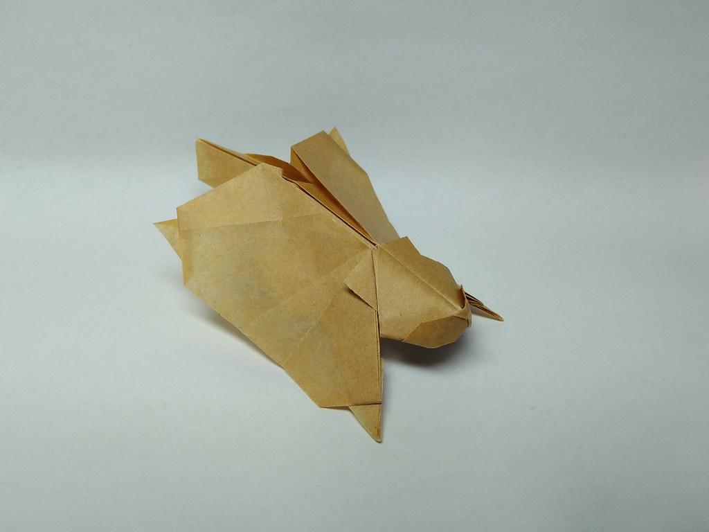 Flying Squirrel By Hagiwara Gen Zephyr Liu Tags Origami Kraft Paper