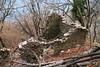 Alpe Pian di Nar (Roveclimb) Tags: mountain montagna prealpi laglio torriggia germanello montidigermanello montiditorriggia colmegnone escursionismo hiking trekking alpepiandinar baita house alm hut alpe alpeggio munt ruin rovina