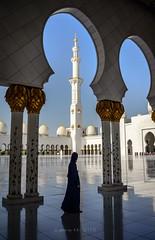 Visitor (go-Foto) Tags: zayed abu dhabi sheikh