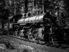 #12 Survive's Longer than the Industry it serviced (Woodypug) Tags: arizona locomotive logging steam railroad history preservation southwest