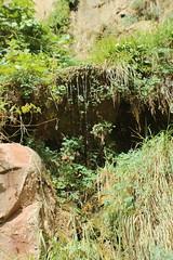 IMG_3759 (Egypt Aimeé) Tags: narrows zion national park canyons pueblos utah arizona