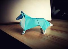 Collie (guangxu233) Tags: origamiart origami paper paperart paperfolding art 折纸 折り紙作品 折り紙 collie dog nicolásgajardohenriquez