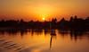 Nilo sunset (Ricardo Carreras) Tags: nilo nile sunset atardecer africa aswan asuan egipto egypt travel felucca sun rio river shadows sombra arboles