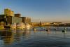 Rijnhaven (RutasTrazadas) Tags: europa europe holanda holland netherlands travel winter rotterdam rijnhaven drijvendpaviljoen