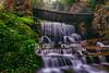 Cascading Waterfalls (lfeng1014) Tags: cascade baofengwaterfalls 寶峰飛瀑 baofenglake wulingyuan zhangjiajie hunan china waterfalls cascadingwaterfalls canon5dmarkiii ef1635mmf28liiusm leefilters travel landscape lifeng