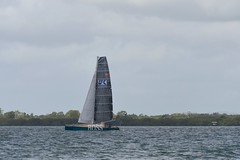 LOX_3781 (Lox Pix) Tags: australia queensland brisbanetogladstone yachtrace catamaran trimaran 2018 bossracing multihull loxpix moretonbay shorncliffe cabbagetreecreek rudder aground sailing loxworx