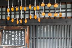 Gion Kyoto (takashi_matsumura) Tags: kyōtoshi kyōtofu japan gion kyoto nikon d5300 autumn fall 祇園 京都 sigma 1750mm f28 ex dc os hsm