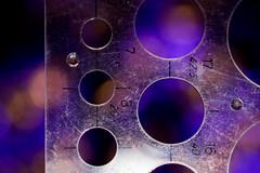 Circles (G_HOWDEN) Tags: circles macromondays macro