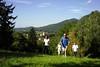 Wandern (KURHAUS Bad Gleichenberg) Tags: bad gleichenberg region ruhe natur landschaft steiermark das kurhaus gesundheit gesundheitszentrum hotel 4 sterne therme therapie wandern