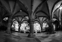 The Crypt (Derwisz) Tags: yorkminster minster cathedral church sacralbuilding historic historicbuildings buildings architecture gothic englishgothic york yorkshire england unitedkingdom uk canon canoneos40d fisheye blackwhite blackandwhite monochrome