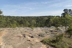 RED02468 (David J. Thomas) Tags: petitjeanstatepark morrilton arkansas hiking caving bedrock forests trees rocks streams creeks waterfalls cedarcreek rockhousecave asgcsymposium