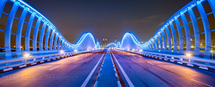 _MG_3294 - Like an exotic butterfly (AlexDROP) Tags: 2018 dubai uae travel banner perspective bridge architecture night color city wideangle urban scape canon6d ef16354lis best iconic famous mustsee picturesque postcard bluehour hdr