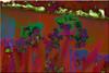 Fauve (seguicollar) Tags: imagencreativa photomanipulación art arte artecreativo artedigital virginiaseguí lirios rojo verde green fauve morado azul flower