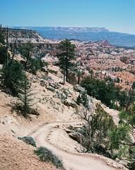 entre (Cogitozoa) Tags: bryce canyon outdoors trees desert landscape sky trail hike national park analogue analog 35mm film kodak ultramax 400iso canonet ql17 giii rangefinder utah brycecanyonnationalpark