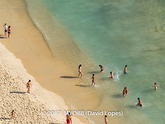 Portugal 2017-9021106-2 (myobb (David Lopes)) Tags: 2017 adobestock allrightsreserved atlanticocean europe nazare portugal aerialview beach beachcopyrighted day daylight enjoyment highangleview leisureactivity ocean outdoors sand sea sunbathing swimming tourism touristattraction traveldestination vacation watersedge ©2017davidlopes