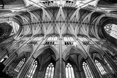 Up (Derwisz) Tags: roof ceiling arch arches architecture gothic englishgothic church cathedral minster yorkminster york yorkshire england unitedkingdom uk canon canoneos40d blackwhite blackandwhite bw monochrome fisheye fisheyelens hdr highdynamicrange historicbuildings