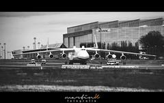 "Antonow An-225 ""Mrija"" - LEJ (Krueger_Martin) Tags: airplane plane flughafen airport spotter spotting antonowan225 an225 antonow mrija königin lej leipzig schkeuditz schwarz weis black white schwarzundweis blackandwhite blacknwhite teleobjektiv canoneos7d canonef70200mmf4l teleconverter dhl"