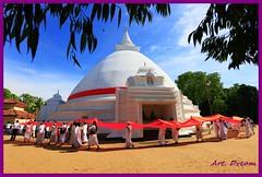 _01A5488 (Dream Delivered (Dreamer)) Tags: srilanka bird buddhism