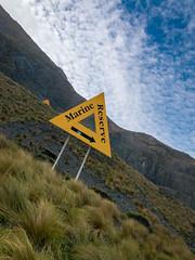 This way up (Will Vale) Tags: redrocks islandbay newzealand leica p9 p9plus hightide sea wellington huawei owhiro walk
