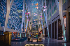 Brookfield Place (A Great Capture) Tags: night breath installation art architecture downtown place brookfield toronto breathatbrookfieldplace brookfieldplto studiofminus agreatcapture agc wwwagreatcapturecom adjm ash2276 ashleylduffus ald mobilejay jamesmitchell on ontario canada canadian photographer northamerica torontoexplore spring springtime printemps