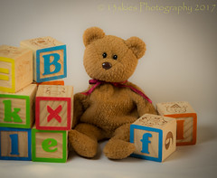Just playing (HTBT) (13skies) Tags: buildingblocks teddybear playing teddybeartuesday happyteddybeartuesday fun playtime learning