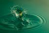 splash-18 (Andreas Stamm) Tags: splash drop droplets tropfen trigger pluto tat waves wellen water wasser highspeed macro makro