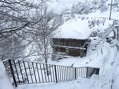 Primavera helada (la_magia) Tags: nieve horreo galicia lugo semanasanta blanco escaleras arquitectura arboles montañas primavera ocebreiro españa