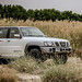 "2017-2018-nissan-super-safari-vtec-review-dubai-carbonoctane-13 • <a style=""font-size:0.8em;"" href=""https://www.flickr.com/photos/78941564@N03/39606116720/"" target=""_blank"">View on Flickr</a>"