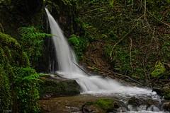 Un rincón húmedo (Carpetovetón) Tags: cascada agua río arroyo regato saltoagua largaexposición vallegón sonya6000 sámano castrourdiales cantabria españa