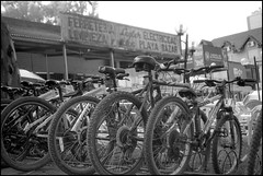 Bicis (mavricich) Tags: monocromo monocromático film película pinamar plaza fomadon kodak calle street carretera rótulo gente en la foto auto ricoh rangefinder retro monochrome mañana momento bicicleta bici bike weel