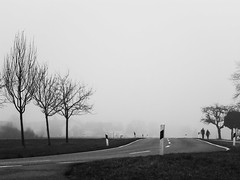 Together (Alex von Sachse) Tags: togehter togetherness togehteralone street streetphotography monocrome blackandwhite schwarzweiss fotokunst fineart fotoart composition fog foggy day mood trees sundaywalk walking panasonic ft5