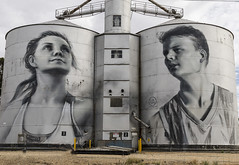 Silo art Rupanyup (Bev-lyn) Tags: silo art grain outdoors westernvictoria bins storage