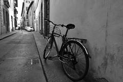 Via dei Pandolfini, Firenze, Italy (DESPITE STRAIGHT LINES) Tags: nikon d7200 nikond7200 nikkor1024mm nikon1024mm getty gettyimages gettyimagesesp despitestraightlinesatgettyimages paulwilliams paulwilliamsatgettyimages florence firenze florenceitaly italy bike bicycle mono street florencestreet viadelcornoflorence