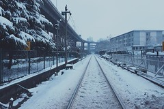 (ys.T) Tags: nanjing snow cold white quiet winter travel china fog life 南京 流浪 鐵軌 凍 白色