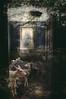 Return To Natue (alyssakriner) Tags: composite nature abandoned photoshop animals digitalmanipulation digitalcomposite