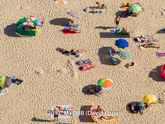 Portugal 2017-9021083-2 (myobb (David Lopes)) Tags: 2017 adobestock allrightsreserved atlanticocean europe nazare portugal aerialview beach beachumbrella copyrighted day daylight enjoyment highangleview leisureactivity outdoors sand sunbathing tourism touristattraction traveldestination umbrella vacation ©2017davidlopes
