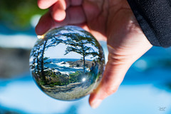 Ucluelet in the magic ball (cdnfish) Tags: ucluelet uclueletbc tofinobc tofino pacificrimnationalpark vancouverisland bc britishcolumbia canada pacific pacificocean tree trees lensball rocks waterfront landscape landscapephotography wildpacifictrail explorevancouverisland water waves