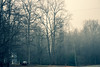 silentHome (RiverTuneShoots) Tags: ellijay georiga mountains nature trees car fog foggy house mailbox winter