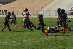 _DSC5890 (zombieduck2010) Tags: 2014 apple valley rattlers victorville cowboys youth football jr pee wee