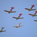 T-6 Harvards formation thumbnail