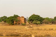 Myanmar-20180324-1251 (ShaneAndRobbie) Tags: nyaungu mandalayregion myanmarburma mm myanmar burma bagan pagoda temple baganarchaeologicalzone baz