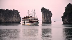 Floating around the Floating Islands, as the sun sets down in Halong Bay, North Vietnam. (One more shot Rog) Tags: victory victorystar halong bayvietnamvietnamesebayseaone more shot rogboatsboatshipsailssailsailingfloating isplandslimestonelimestone cliffsgulf tonkin